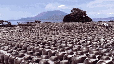 坂元の黒酢 壷畑